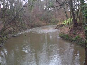 River Bollin Tanyard Farm