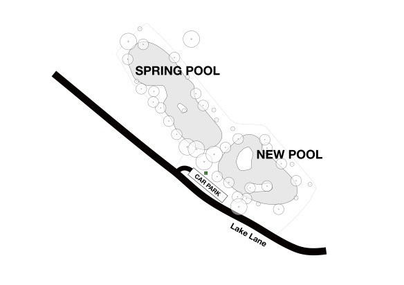 Spring & New Pools Detail