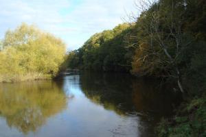 River Severn Bicton