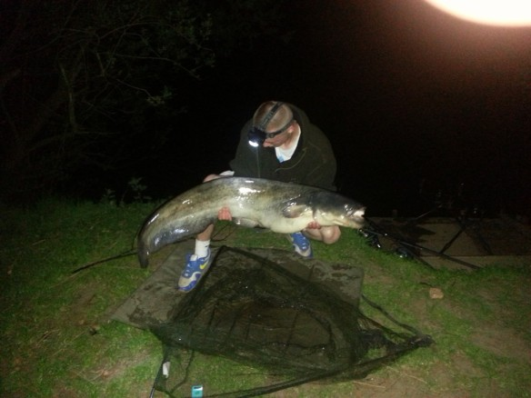 Jamie Wood 33lb Catfish Spring Pool