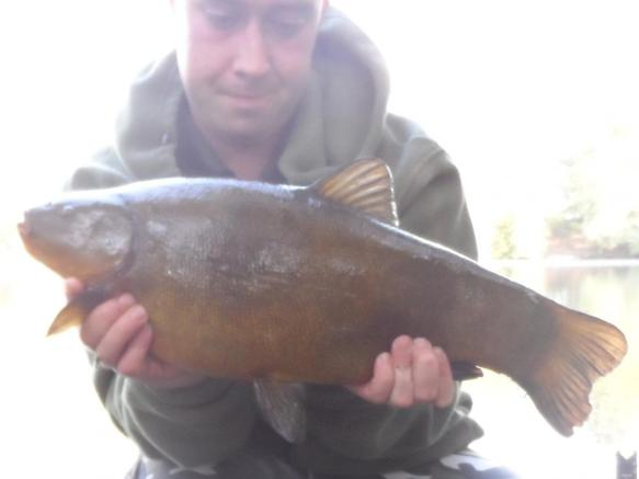 Mark Harrison 7lb 2oz Tench Lymmvale